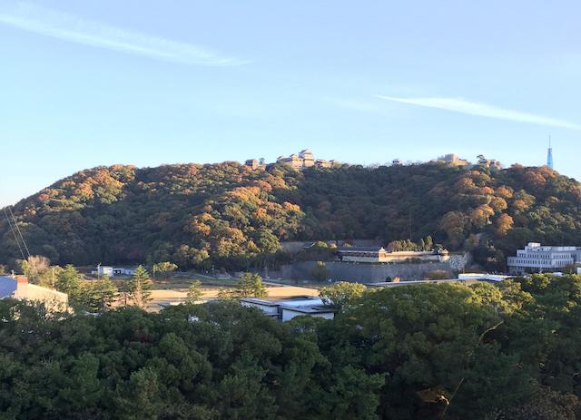 松山城と空